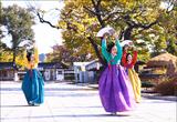 한국 전통 공연, 온라인으로 즐기기