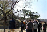 창경궁 나무들이 들려주는 흥미진진 구중궁궐 이야기