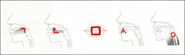 Image result for 한글 발음 기관