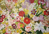 화사한 봄을 기다리는 마음으로 꽃전시를 볼까?